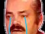 :risitas-pleure1: