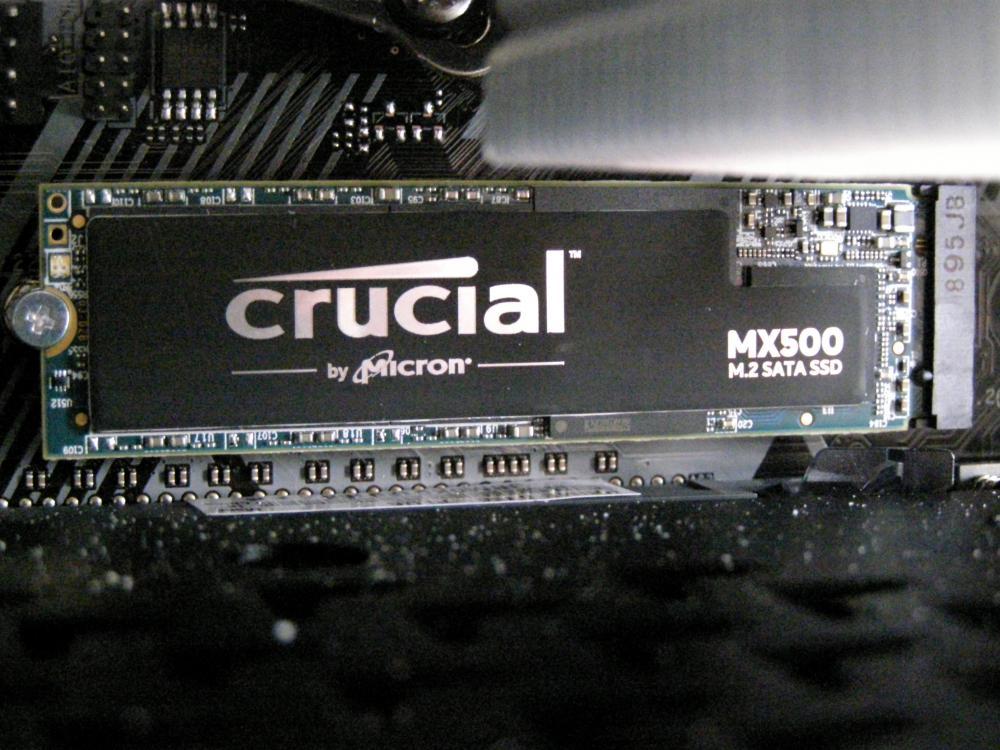 P1010529.thumb.JPG.fa9c77915e2fa856a760c4fc4541c0d4.JPG